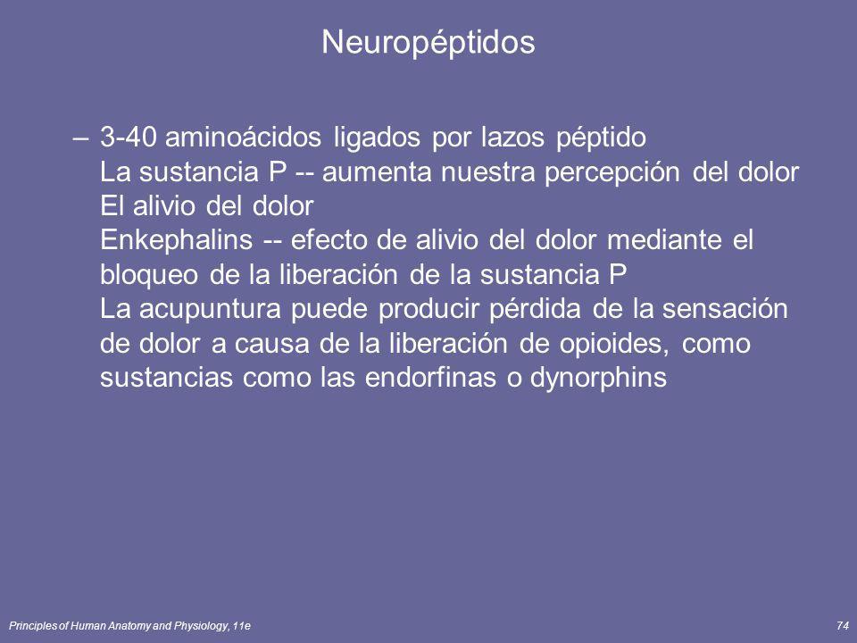 Neuropéptidos