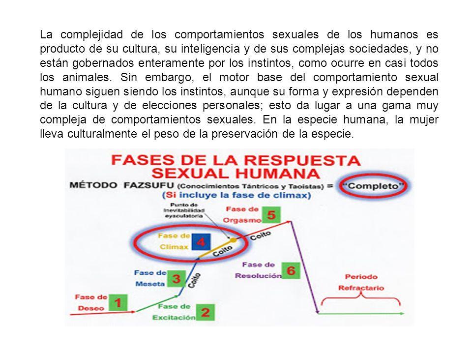 La complejidad de los comportamientos sexuales de los humanos es producto de su cultura, su inteligencia y de sus complejas sociedades, y no están gobernados enteramente por los instintos, como ocurre en casi todos los animales.