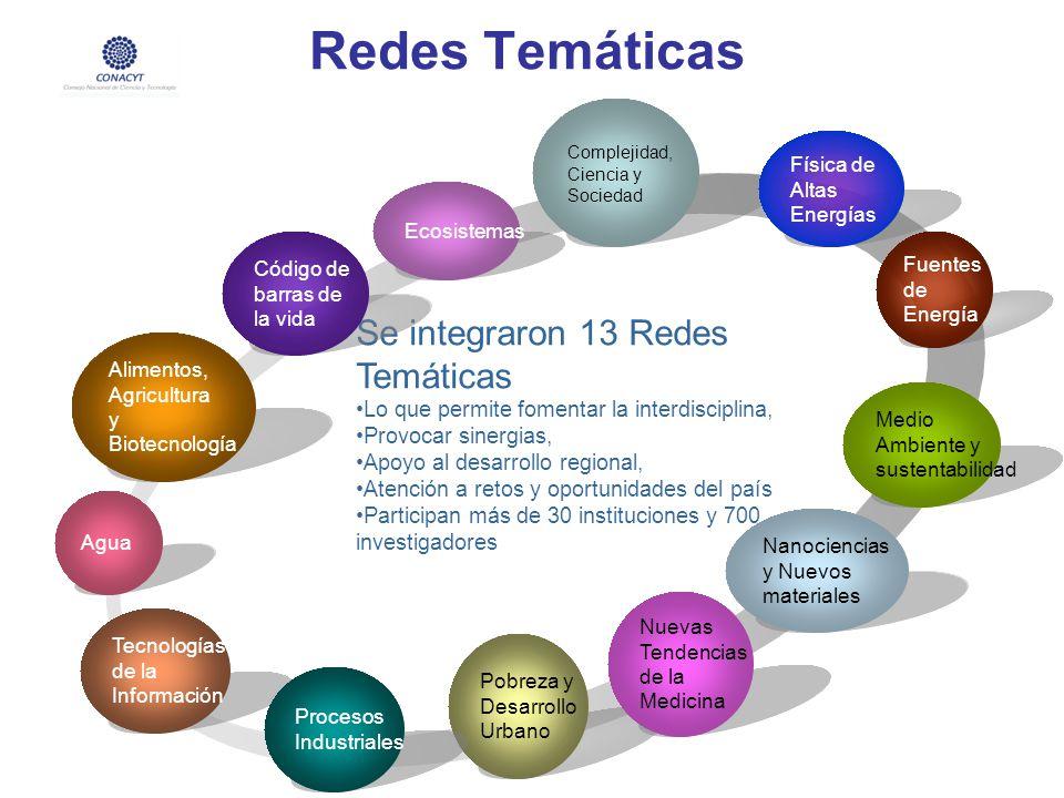 Redes Temáticas Se integraron 13 Redes Temáticas