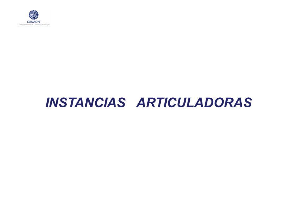 INSTANCIAS ARTICULADORAS