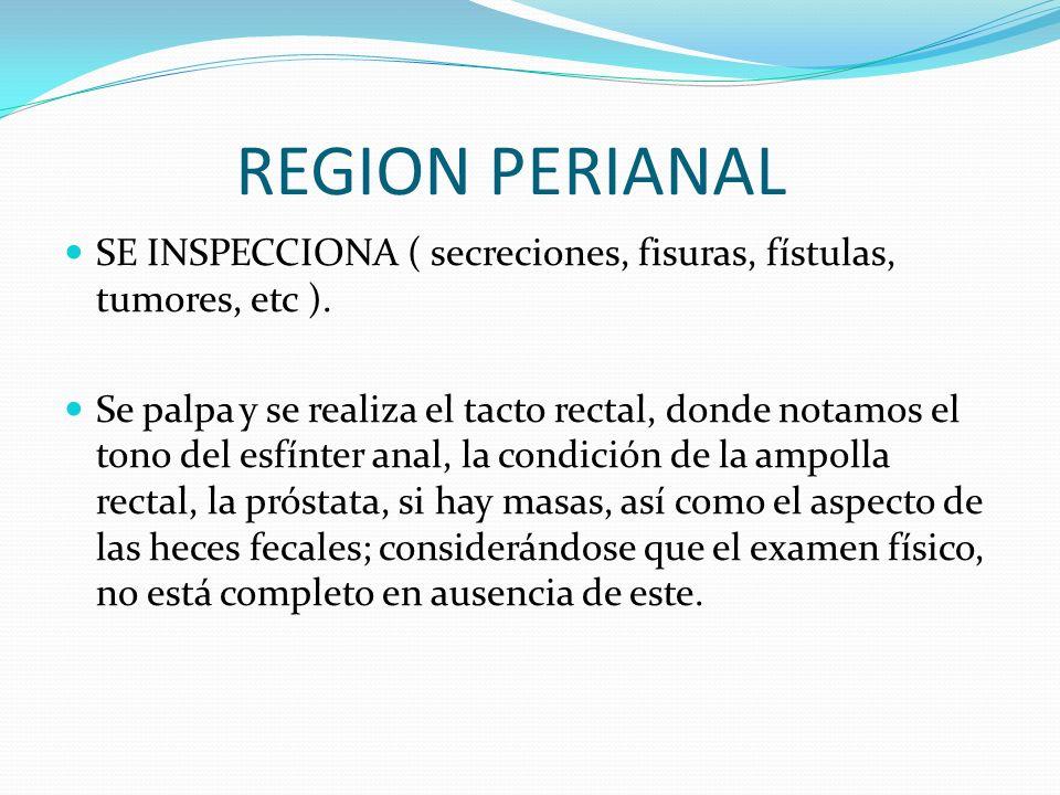 REGION PERIANALSE INSPECCIONA ( secreciones, fisuras, fístulas, tumores, etc ).