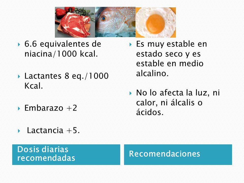 6.6 equivalentes de niacina/1000 kcal.