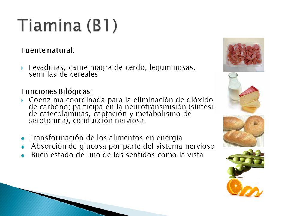 Tiamina (B1) Fuente natural: