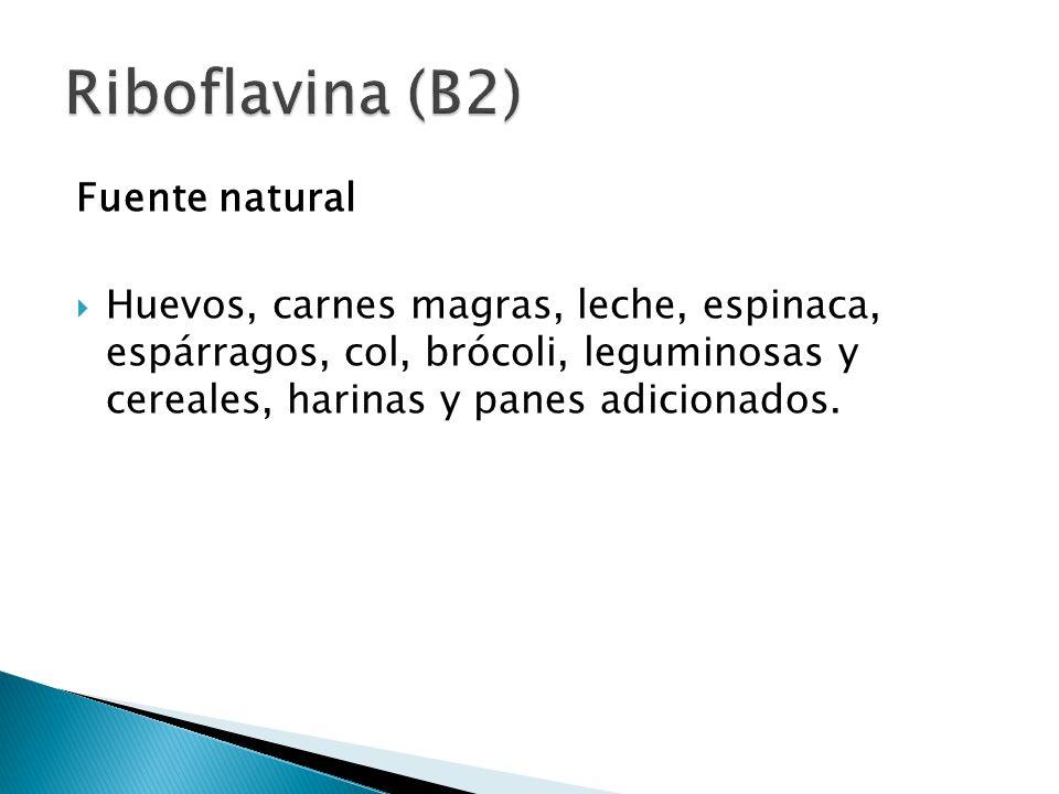 Riboflavina (B2) Fuente natural