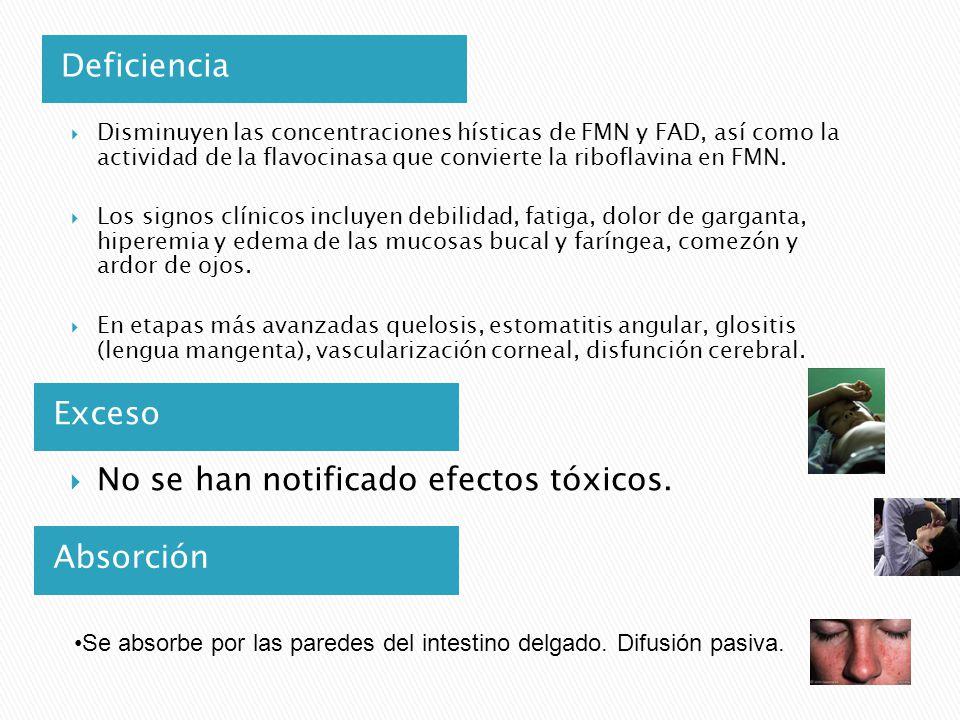 No se han notificado efectos tóxicos.