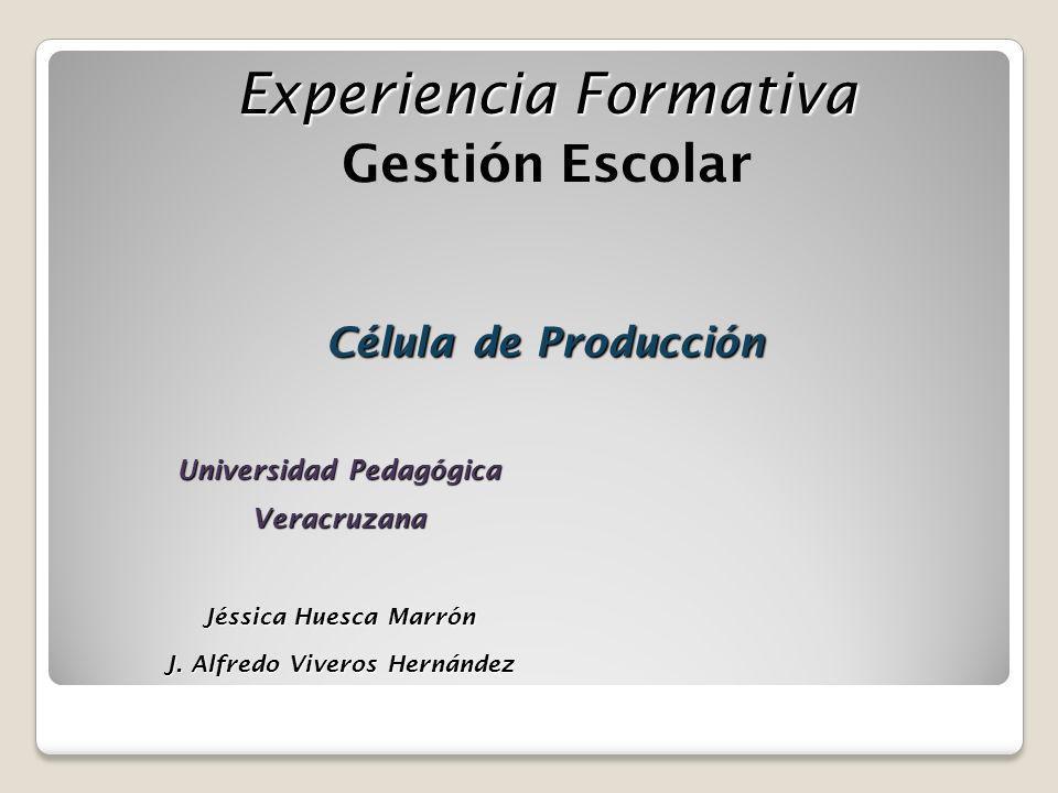 Universidad Pedagógica Veracruzana J. Alfredo Viveros Hernández