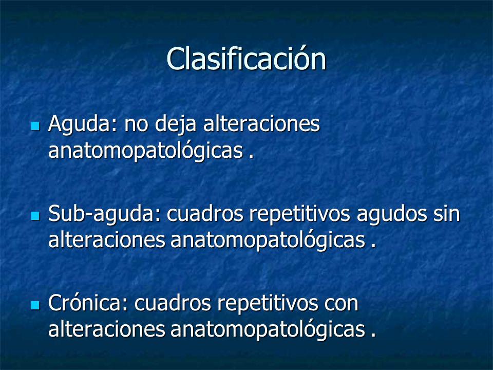 Clasificación Aguda: no deja alteraciones anatomopatológicas .