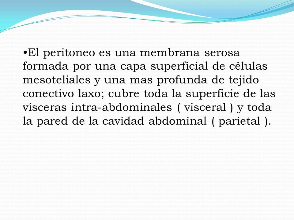 El peritoneo es una membrana serosa formada por una capa superficial de células mesoteliales y una mas profunda de tejido conectivo laxo; cubre toda la superficie de las vísceras intra-abdominales ( visceral ) y toda la pared de la cavidad abdominal ( parietal ).