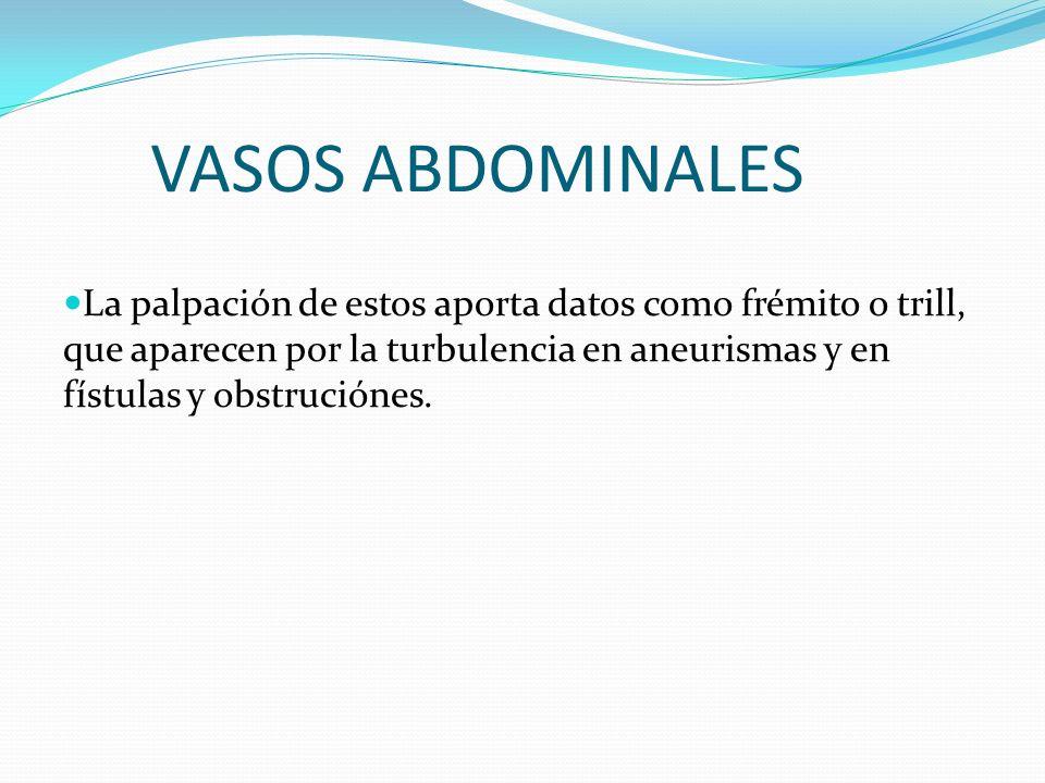 VASOS ABDOMINALES