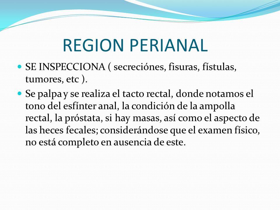 REGION PERIANAL SE INSPECCIONA ( secreciónes, fisuras, fístulas, tumores, etc ).
