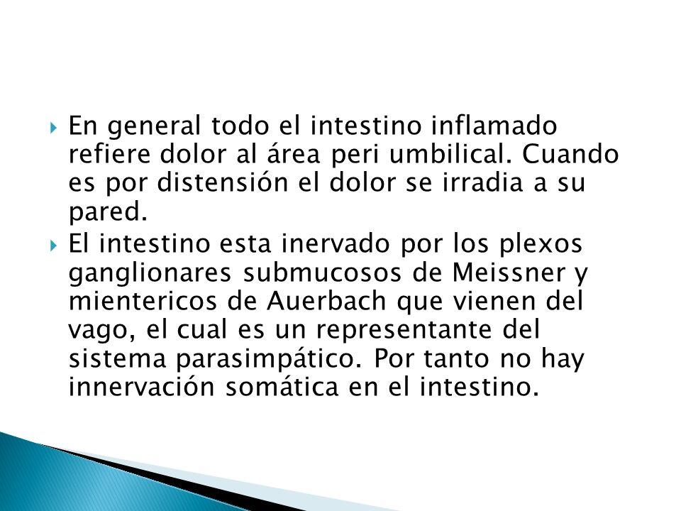 En general todo el intestino inflamado refiere dolor al área peri umbilical. Cuando es por distensión el dolor se irradia a su pared.
