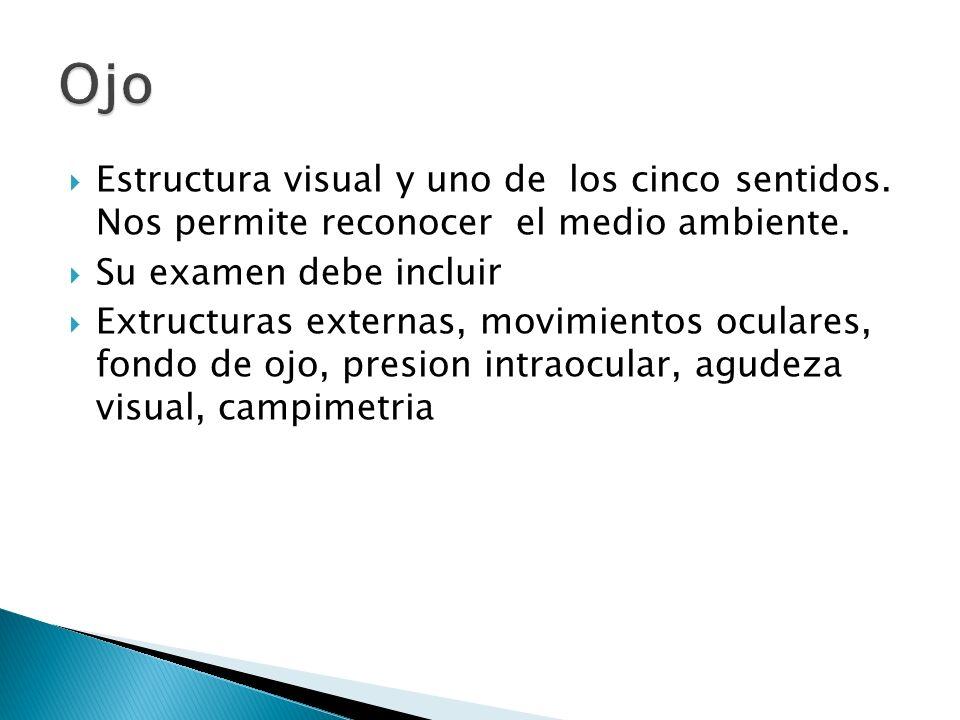 OjoEstructura visual y uno de los cinco sentidos. Nos permite reconocer el medio ambiente. Su examen debe incluir.