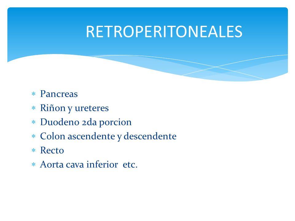 RETROPERITONEALES Pancreas Riñon y ureteres Duodeno 2da porcion
