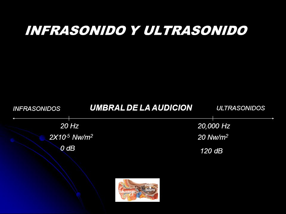 INFRASONIDO Y ULTRASONIDO