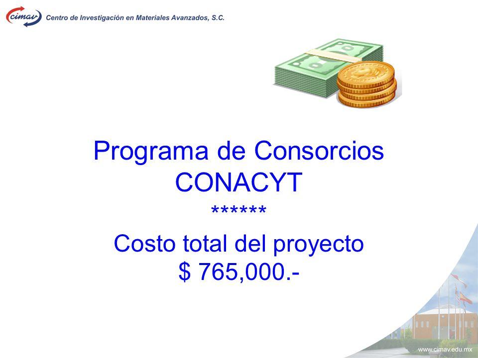 Programa de Consorcios CONACYT