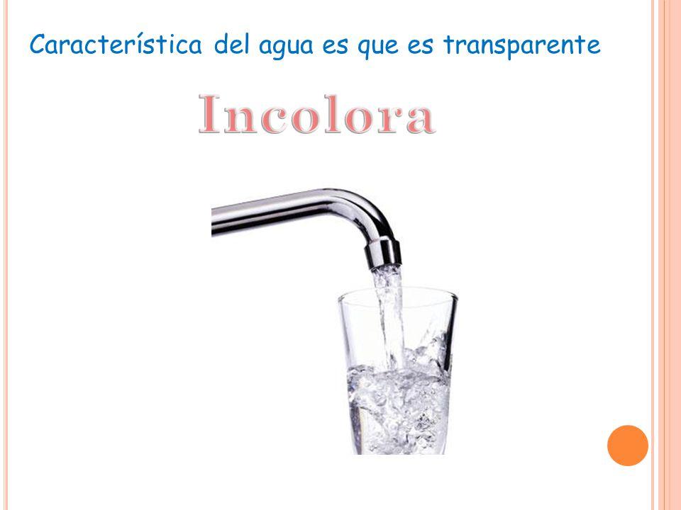 Característica del agua es que es transparente