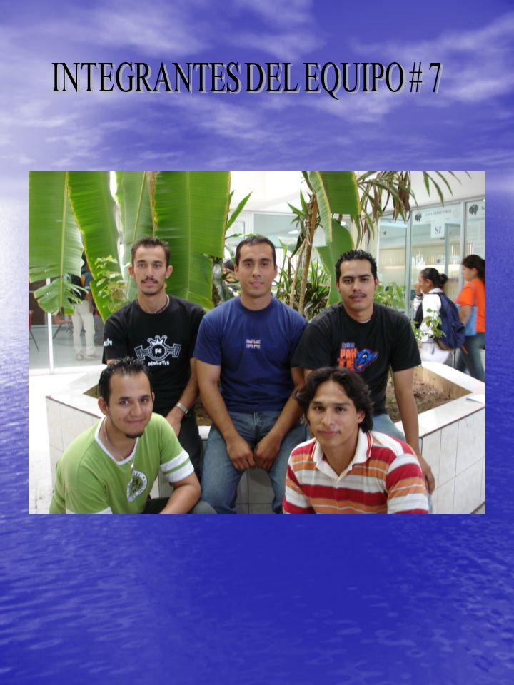 INTEGRANTES DEL EQUIPO # 7