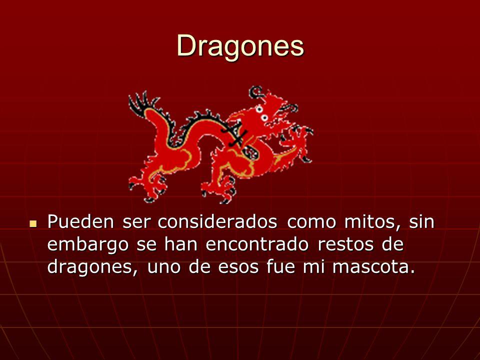 Dragones Pueden ser considerados como mitos, sin embargo se han encontrado restos de dragones, uno de esos fue mi mascota.