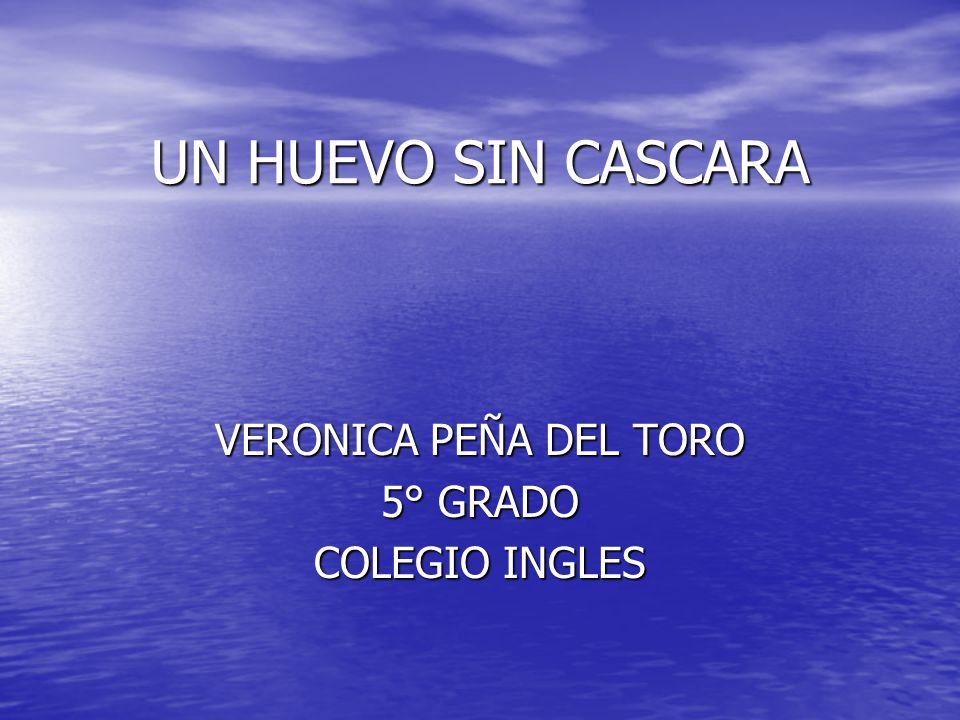 VERONICA PEÑA DEL TORO 5° GRADO COLEGIO INGLES