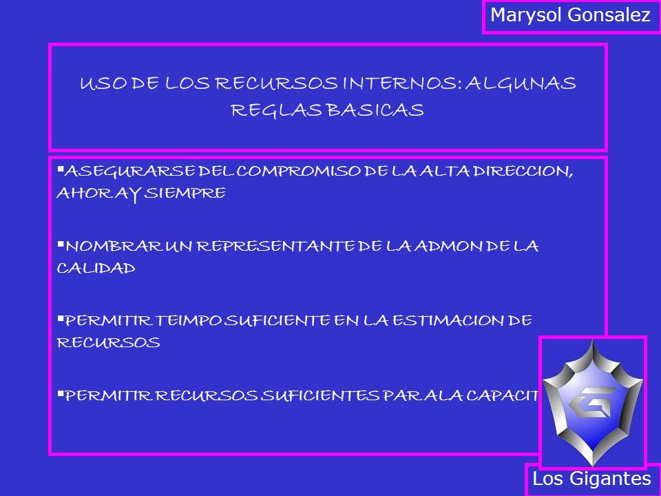USO DE LOS RECURSOS INTERNOS: ALGUNAS REGLAS BASICAS