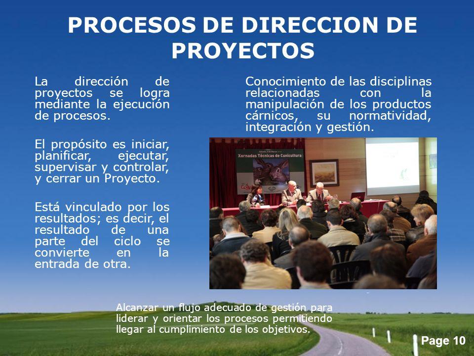 PROCESOS DE DIRECCION DE PROYECTOS