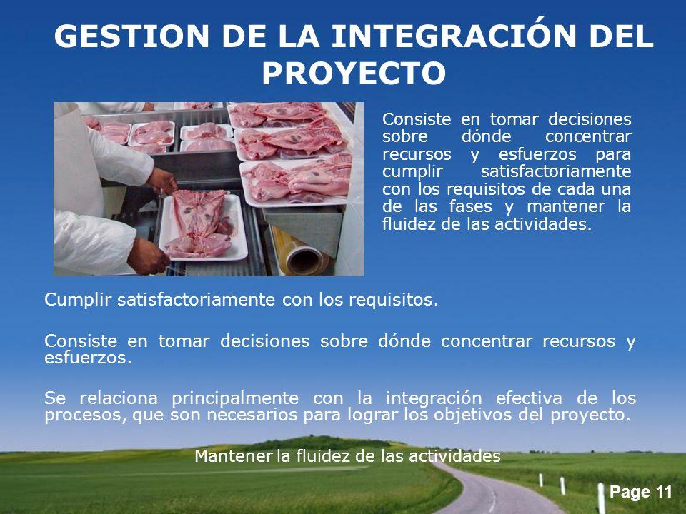 GESTION DE LA INTEGRACIÓN DEL PROYECTO