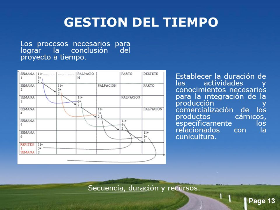 GESTION DEL TIEMPO Los procesos necesarios para lograr la conclusión del proyecto a tiempo.