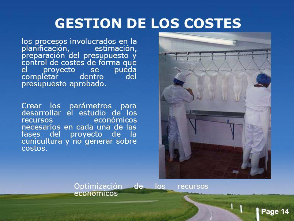 GESTION DE LOS COSTES