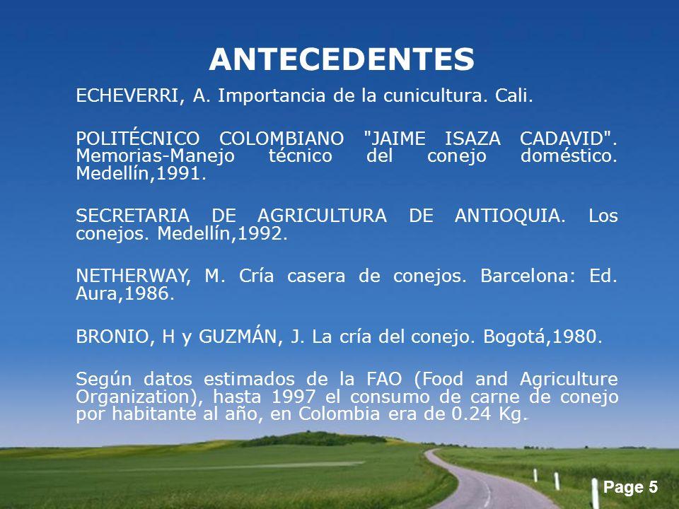 ANTECEDENTES ECHEVERRI, A. Importancia de la cunicultura. Cali.