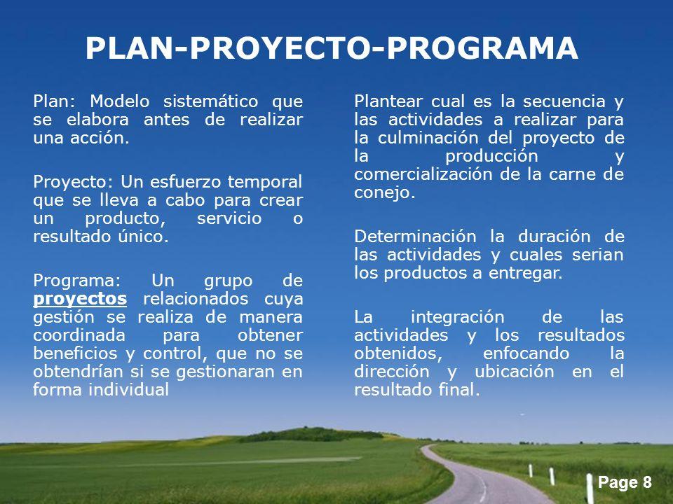 PLAN-PROYECTO-PROGRAMA