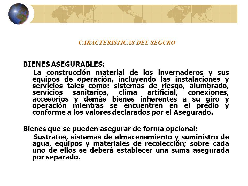 CARACTERISTICAS DEL SEGURO