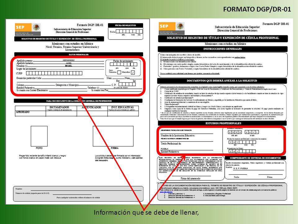 FORMATO DGP/DR-01 Información que se debe de llenar,