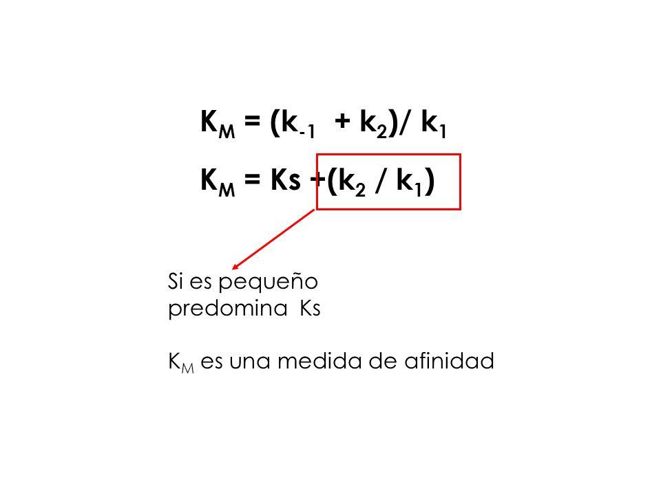 KM = (k-1 + k2)/ k1 KM = Ks +(k2 / k1) Si es pequeño predomina Ks
