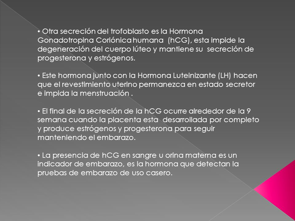 Otra secreción del trofoblasto es la Hormona Gonadotropina Coriónica humana (hCG), esta impide la degeneración del cuerpo lúteo y mantiene su secreción de progesterona y estrógenos.