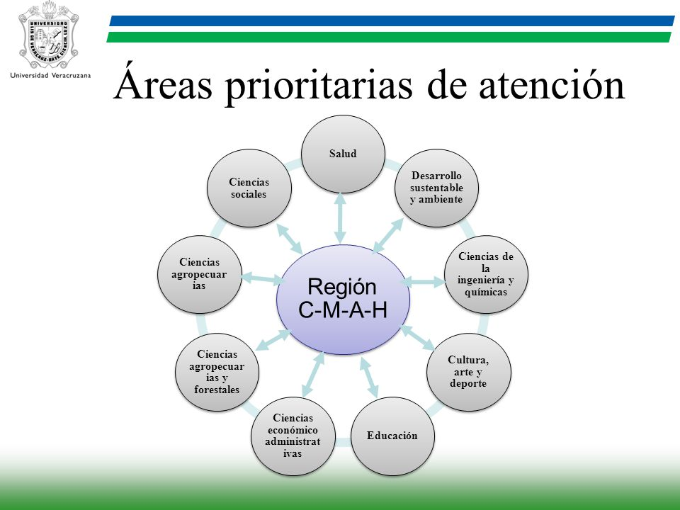 Áreas prioritarias de atención