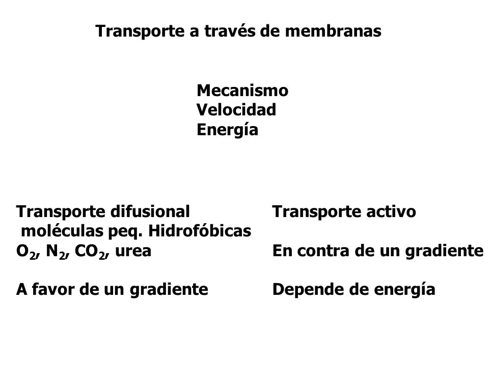 Transporte a través de membranas