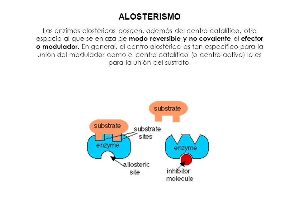 ALOSTERISMO