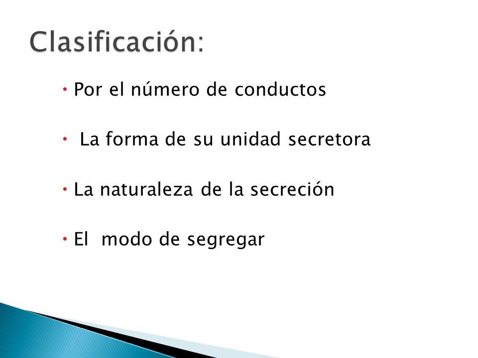 Clasificación: Por el número de conductos