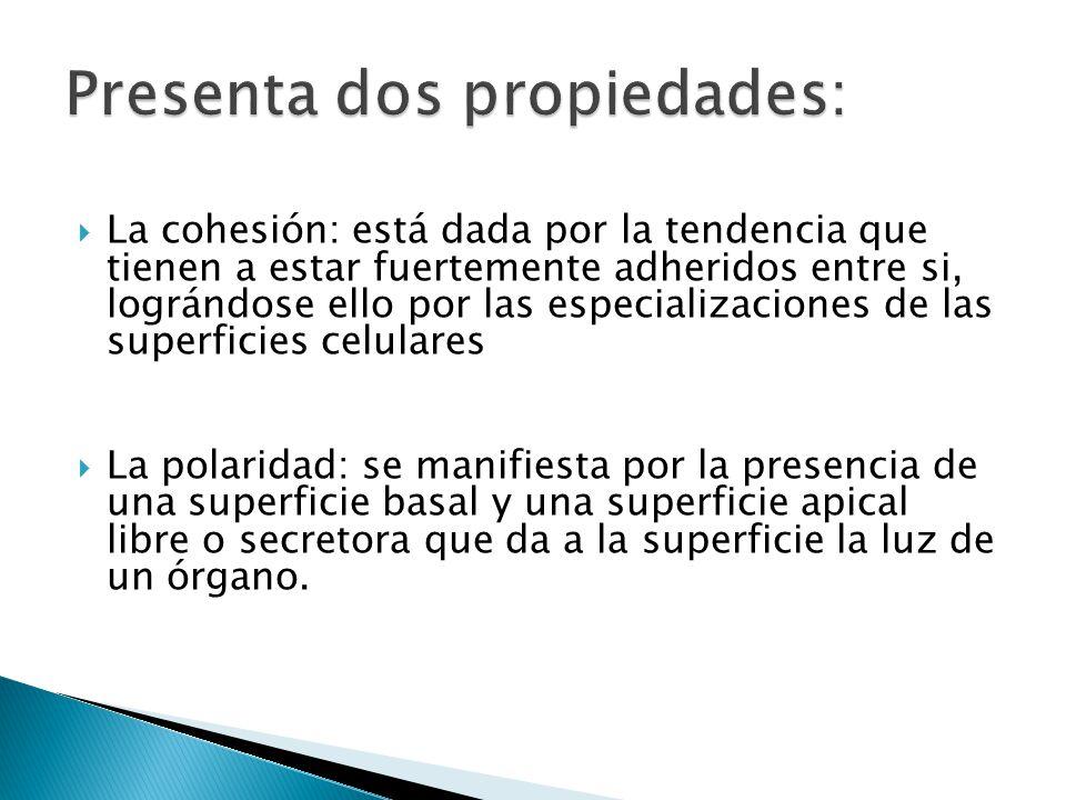 Presenta dos propiedades: