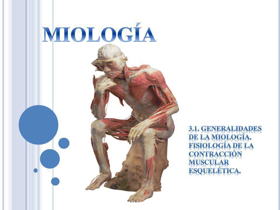 MIOLOGÍA 3.1. GENERALIDADES DE LA MIOLOGÍA. FISIOLOGÍA DE LA CONTRACCIÓN MUSCULAR ESQUELÉTICA.
