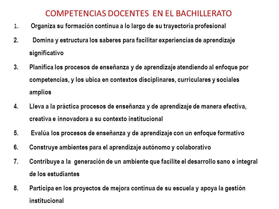 COMPETENCIAS DOCENTES EN EL BACHILLERATO