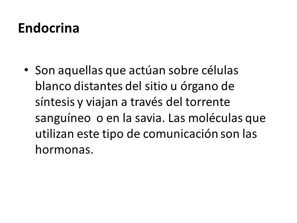 Endocrina