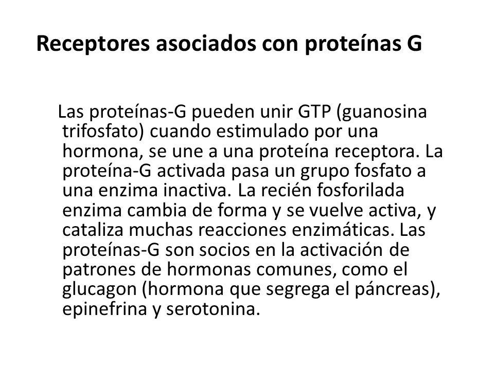 Receptores asociados con proteínas G