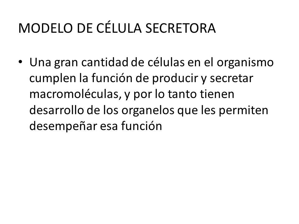MODELO DE CÉLULA SECRETORA