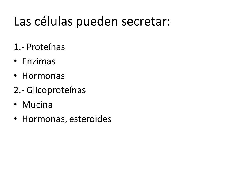Las células pueden secretar: