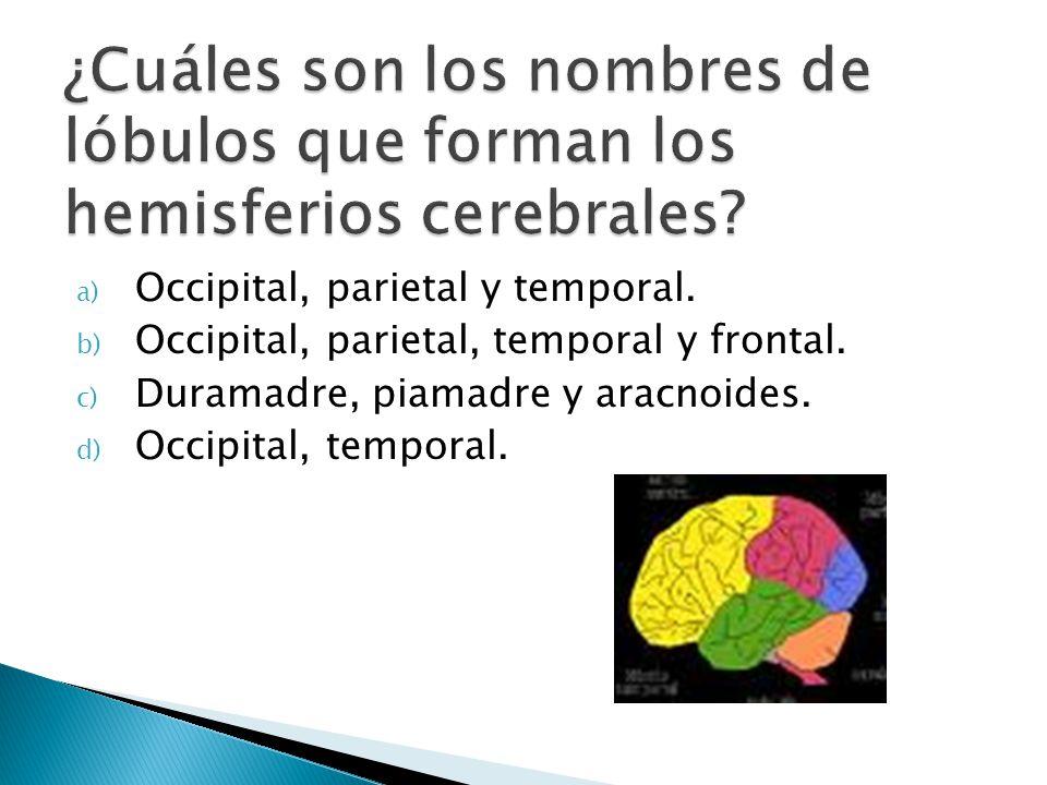 ¿Cuáles son los nombres de lóbulos que forman los hemisferios cerebrales