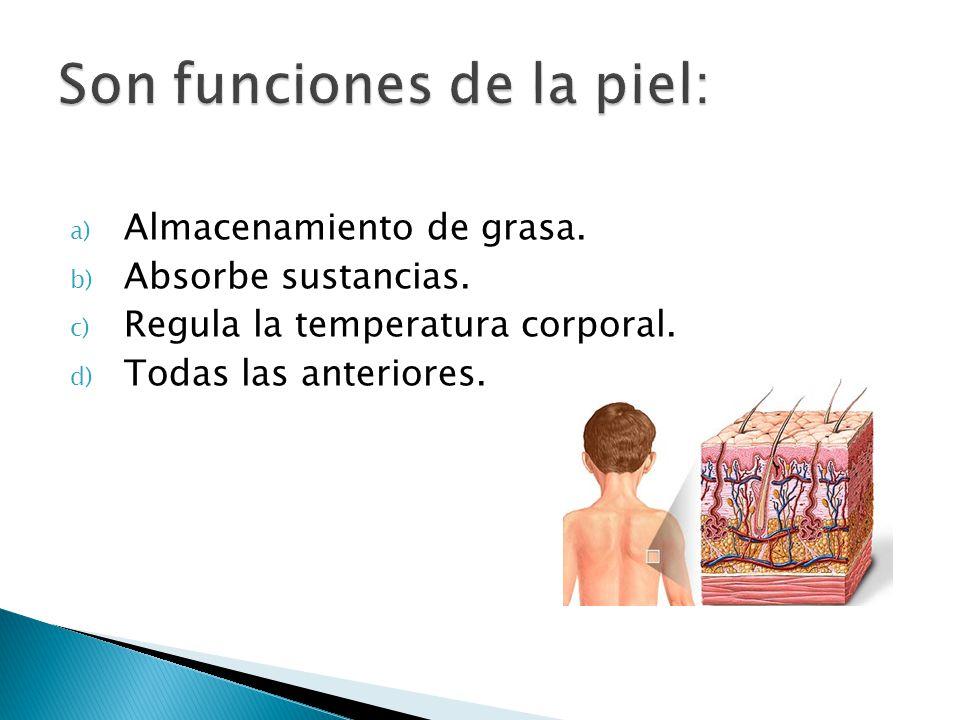 Son funciones de la piel:
