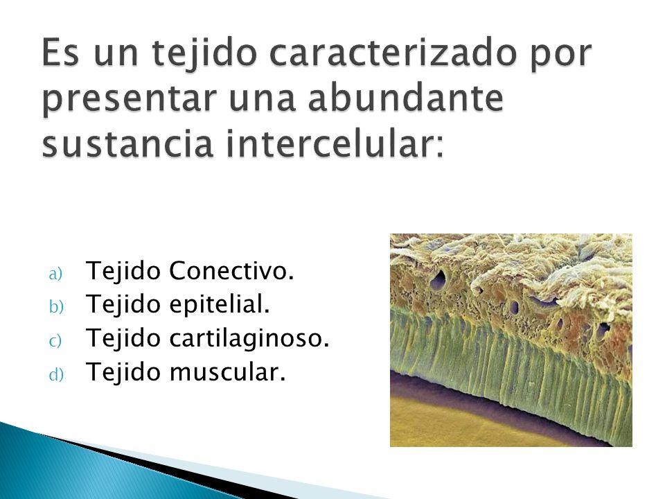 Es un tejido caracterizado por presentar una abundante sustancia intercelular: