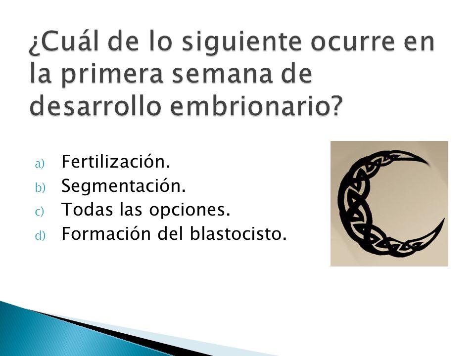 ¿Cuál de lo siguiente ocurre en la primera semana de desarrollo embrionario