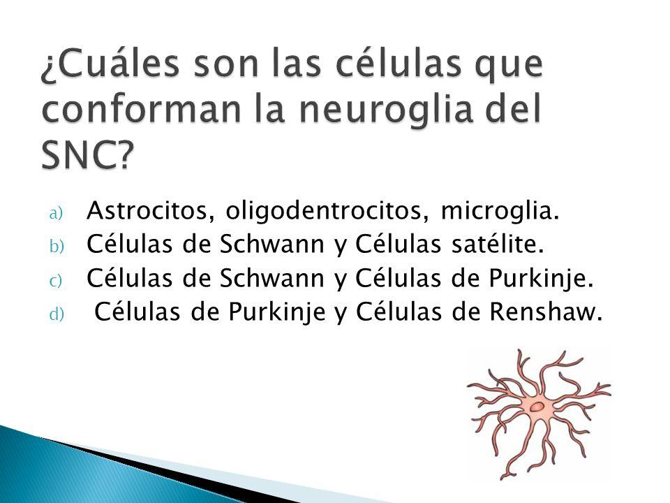 ¿Cuáles son las células que conforman la neuroglia del SNC